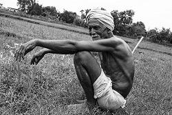 ভারতীয় কৃষক রা দ্রারিদ্র ঋণ সমস্যায়